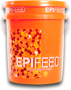 Epifeed - Aquaculture Feed